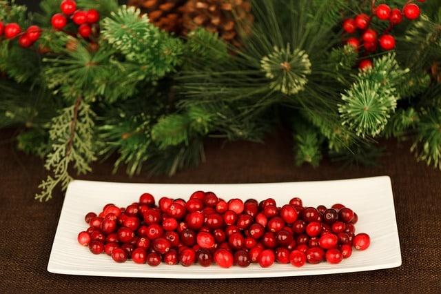 Cranberries bei Blasenentzündung essen