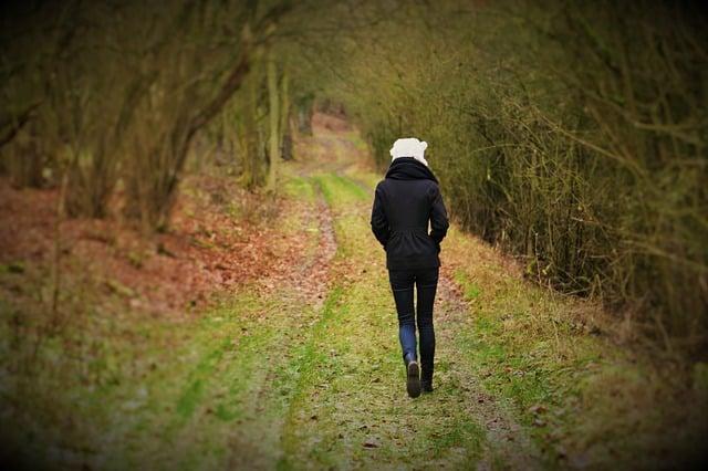Spaziergang bei einem Kater