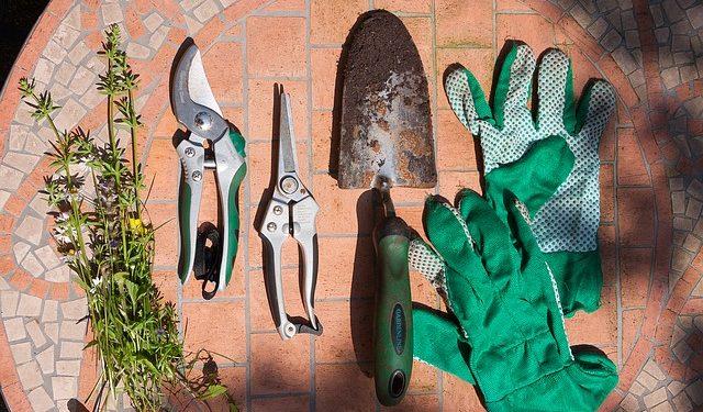 Gartengestaltung & Gartenplanung - Tipps und Tricks ...