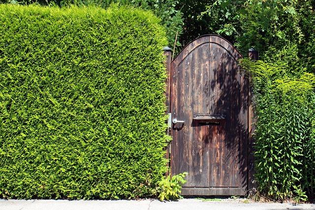 Sichtschutz im modernen Garten