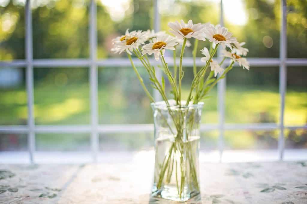 Bild Glasfenster und Glasvase
