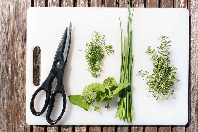Bild Küchenkräuter