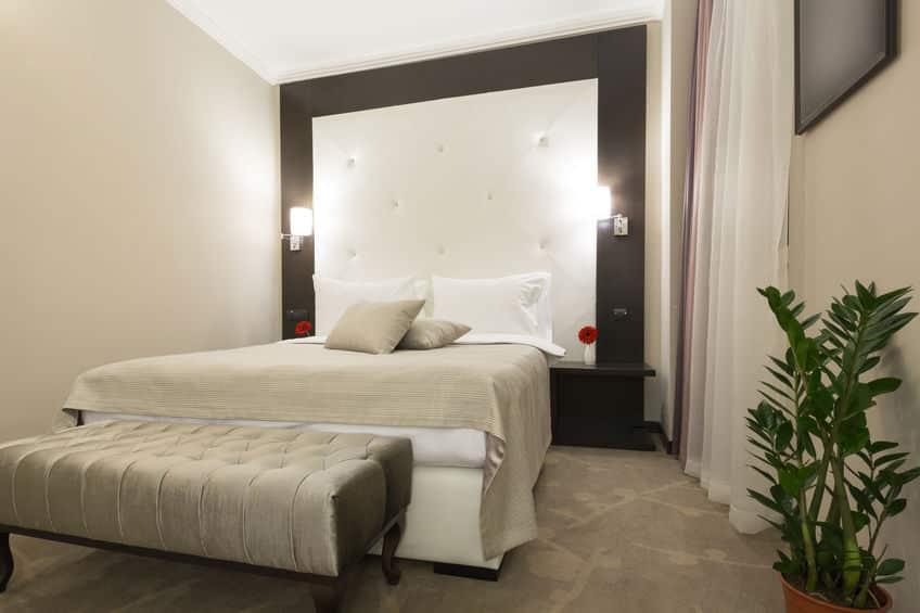 pflanzen im schlafzimmer sch dlich oder nicht. Black Bedroom Furniture Sets. Home Design Ideas