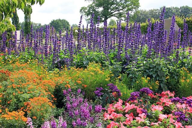 Bodenanalyse Damit Es Im Garten Richtig Blüht Expertenmagazinecom