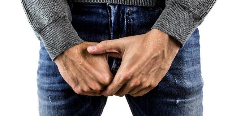 Bild Penisbruch