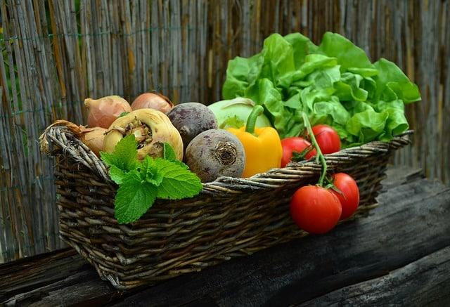 Bild Garten Gemüse