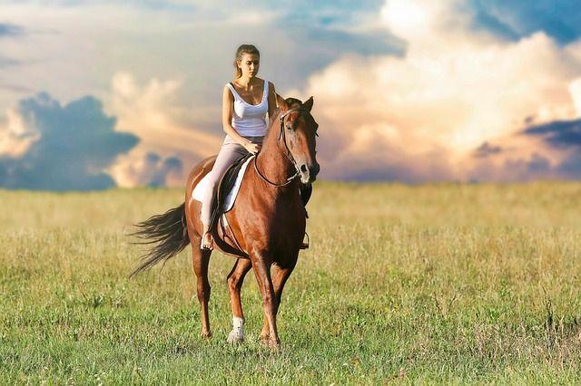 Bild Unfall mit Pferd beim Reiten